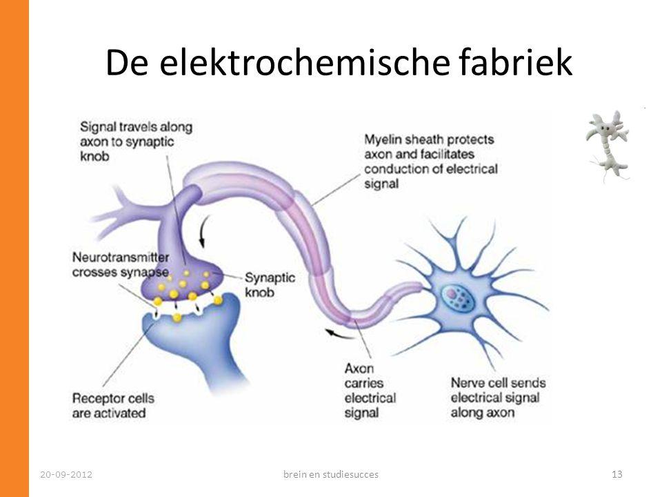 De elektrochemische fabriek 20-09-2012 brein en studiesucces13