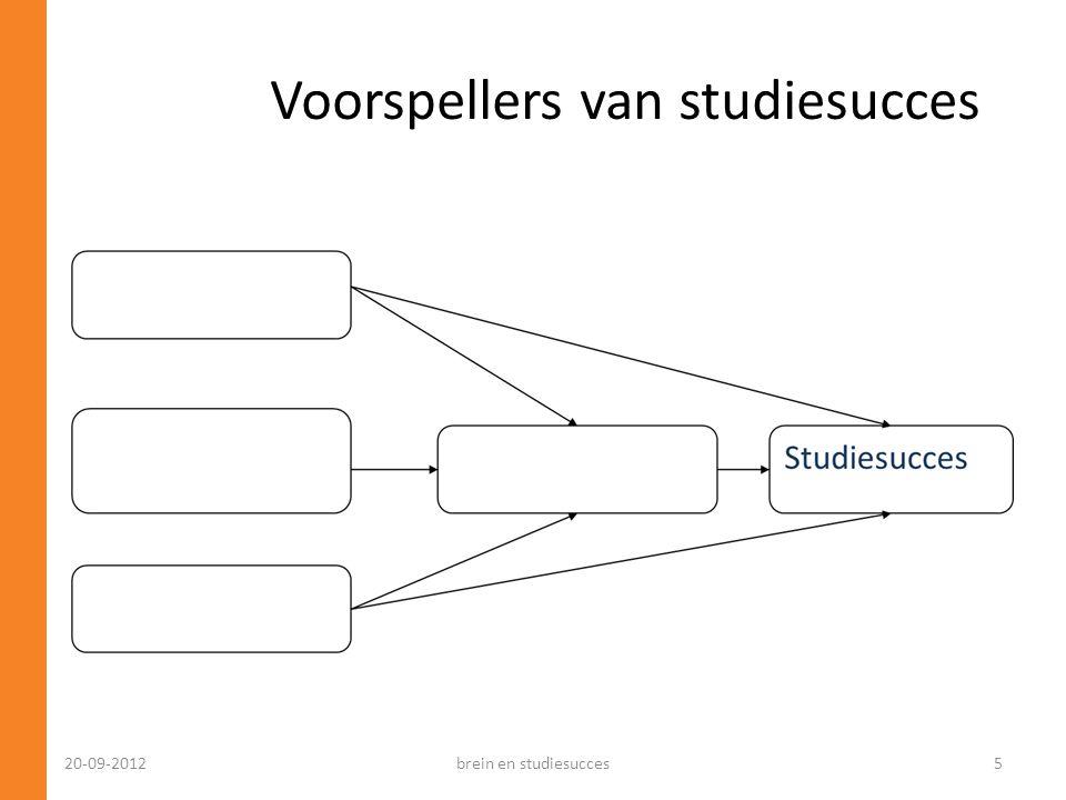 Voorspellers van studiesucces 20-09-2012brein en studiesucces5
