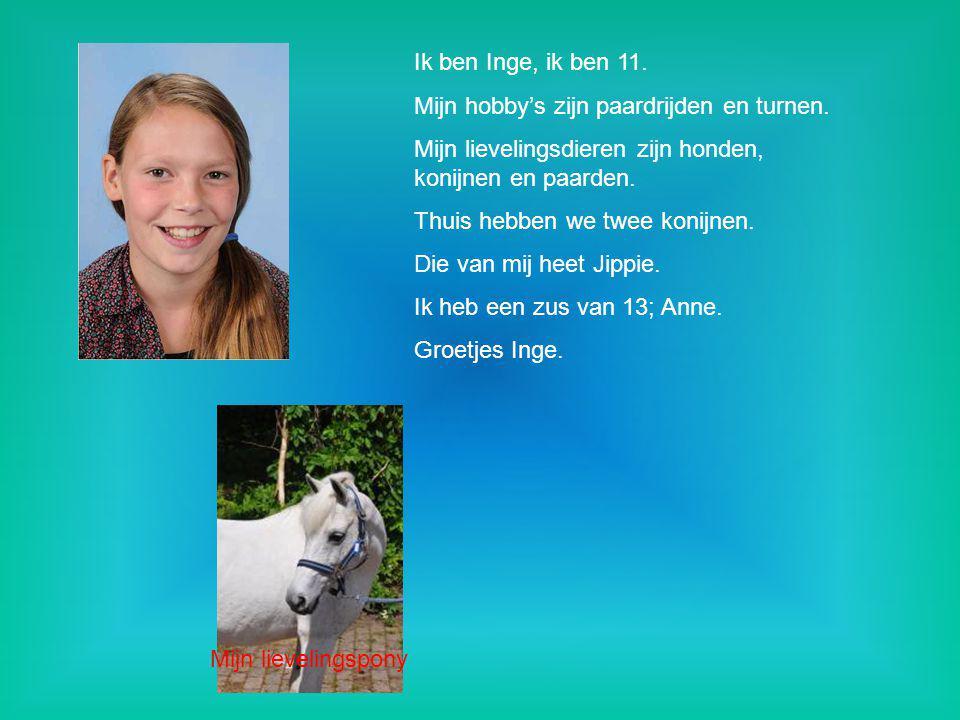 Ik ben Inge, ik ben 11. Mijn hobby's zijn paardrijden en turnen. Mijn lievelingsdieren zijn honden, konijnen en paarden. Thuis hebben we twee konijnen