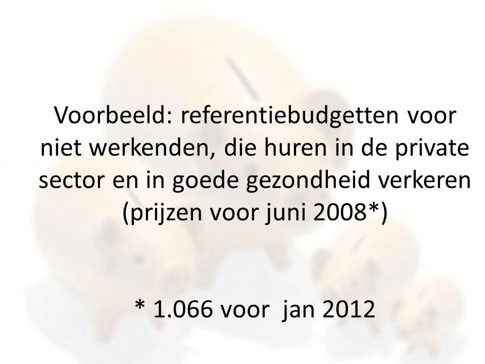 Voorbeeld: referentiebudgetten voor niet werkenden, die huren in de private sector en in goede gezondheid verkeren (prijzen voor juni 2008*) * 1.066 v