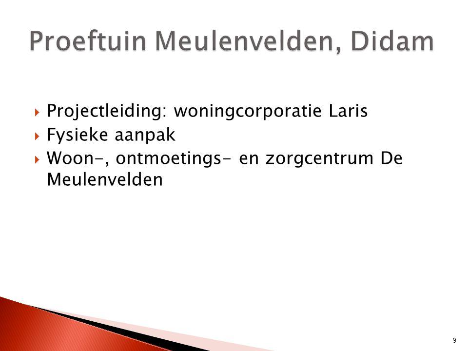  Projectleiding: woningcorporatie Laris  Fysieke aanpak  Woon-, ontmoetings- en zorgcentrum De Meulenvelden 9