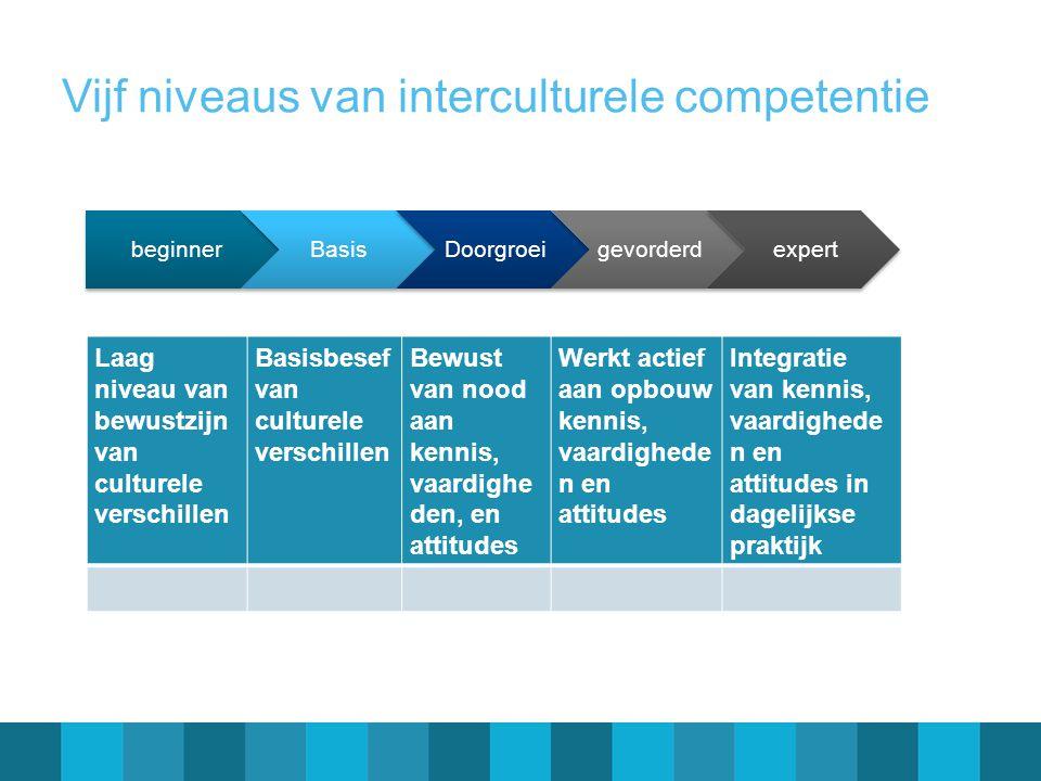 Vijf niveaus van interculturele competentie beginnerBasisDoorgroeigevorderdexpert Laag niveau van bewustzijn van culturele verschillen Basisbesef van