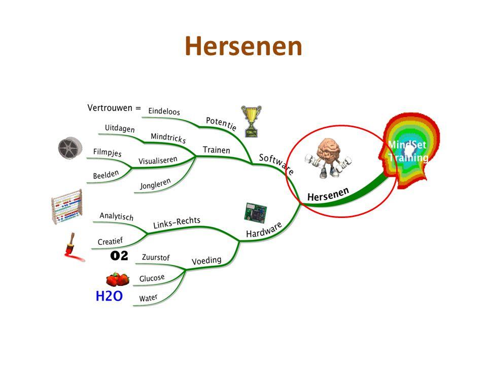 Hersencellen •LEREN: het vormen van sterke en uitgebreide verbindingen tussen hersencellen • Volwassen brein: 16 miljard hersencellen (neuronen) • Uitgebreide en nieuwe verbindingen: door het doorgegeven van signalen (informatie) tussen hersencellen • Sterke verbindingen: vaak dezelfde informatie op verschillende manieren (zintuigen) beleven klik