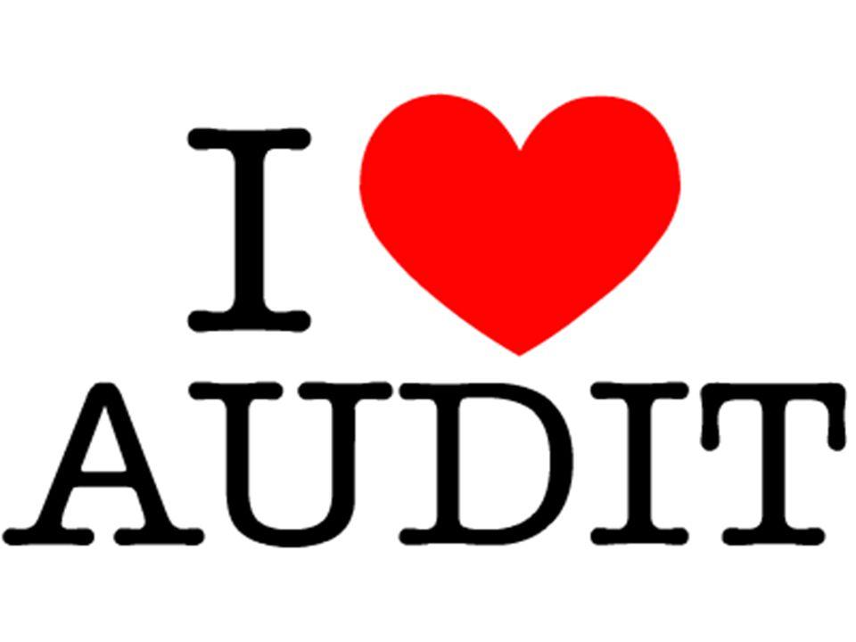 Interne audit Studiedag VLO 28/02/13Deugdelijk overheidsbestuur13