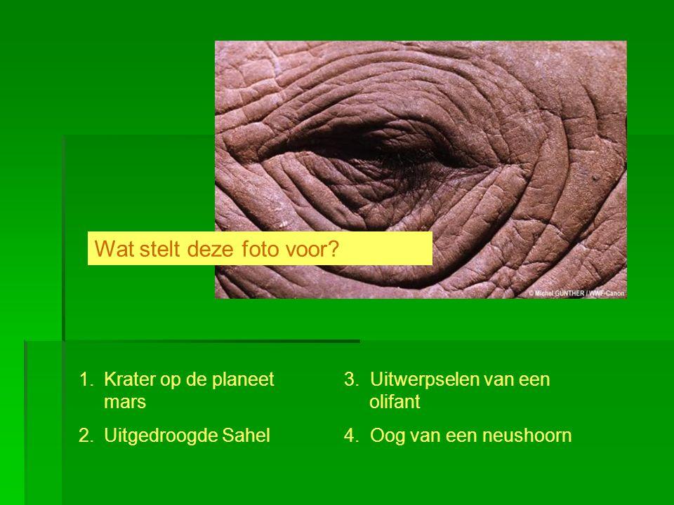 1.Krater op de planeet mars 2.Uitgedroogde Sahel 3. Uitwerpselen van een olifant 4. Oog van een neushoorn Wat stelt deze foto voor?