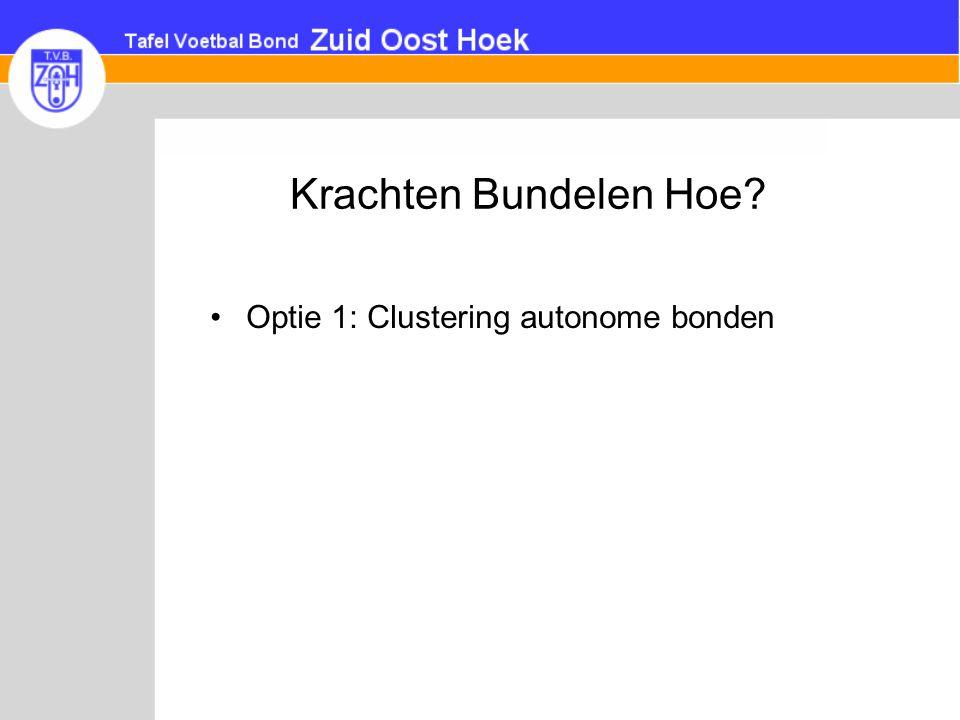 Krachten Bundelen Hoe? •Optie 1: Clustering autonome bonden