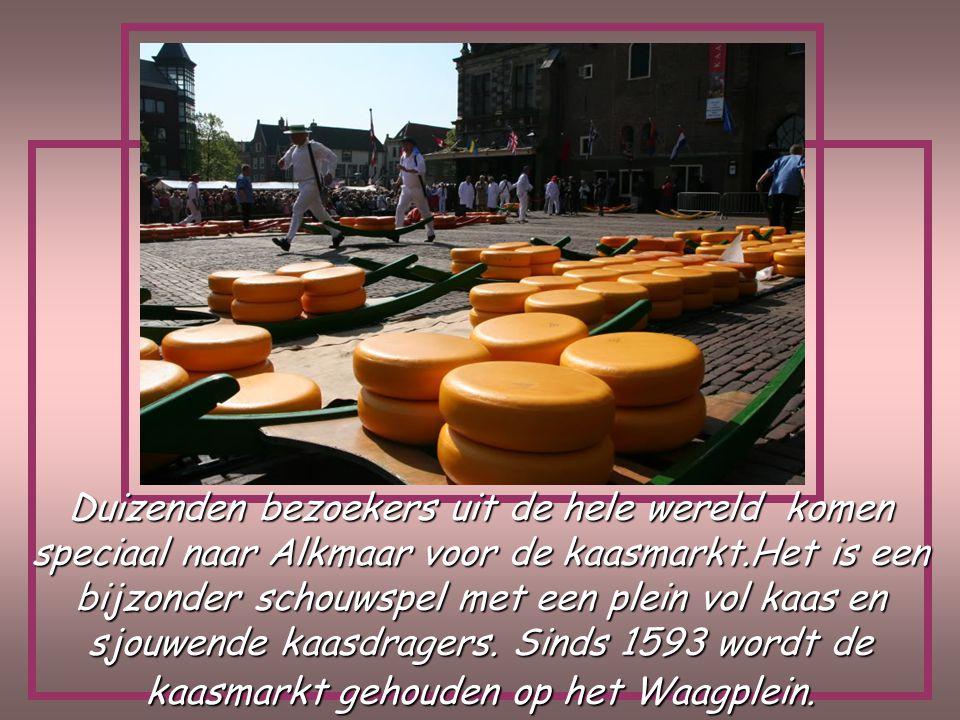 Na het laden van de koffers, maken we in de voormiddag een uitstap naar de kaasmarkt van Alkmaar Dag 5