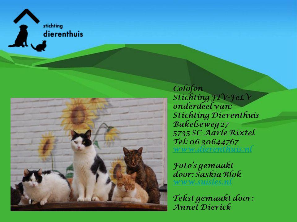 Colofon Stichting FIV-FeLV onderdeel van: Stichting Dierenthuis Bakelseweg 27 5735 SC Aarle Rixtel Tel: 06 30644767 www.dierenthuis.nl Foto's gemaakt