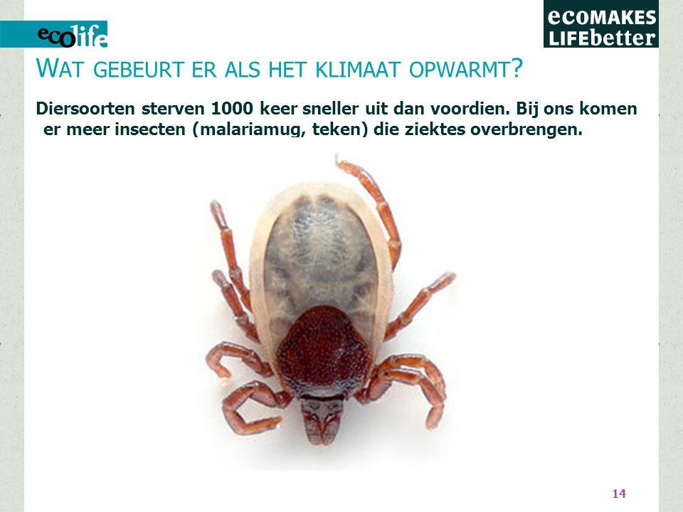 14 Diersoorten sterven 1000 keer sneller uit dan voordien.