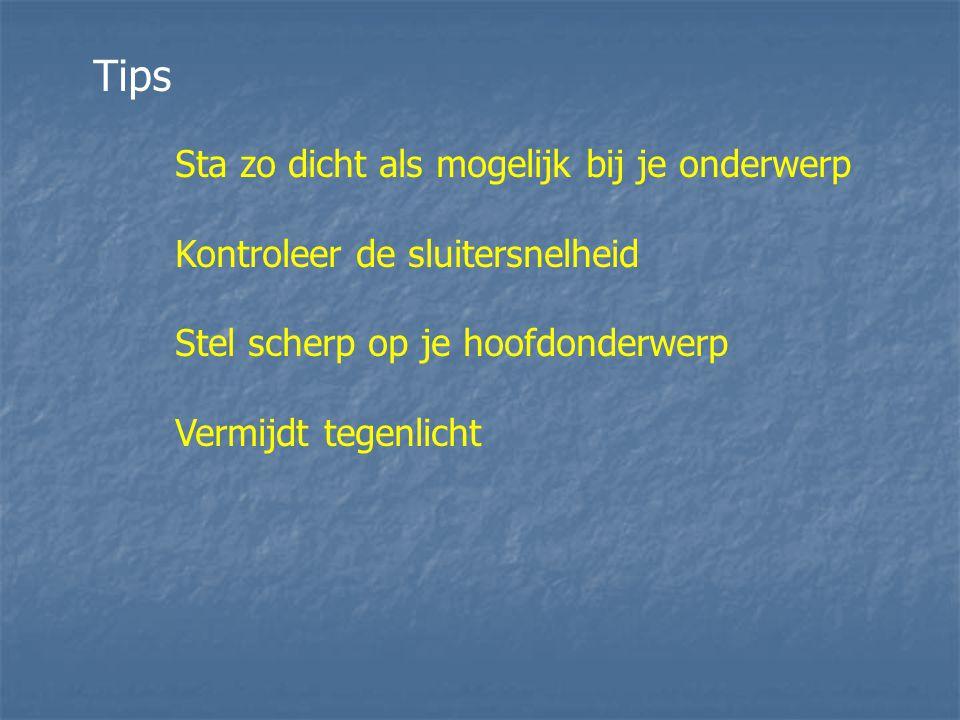 Tips Sta zo dicht als mogelijk bij je onderwerp Kontroleer de sluitersnelheid Stel scherp op je hoofdonderwerp Vermijdt tegenlicht
