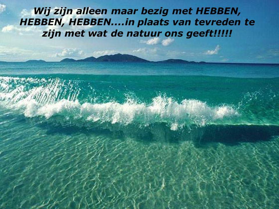 Iedere dag worden wij armer omdat wij niet zien hoe mooi de natuur is die onze Schepper aan ons heeft gegeven..