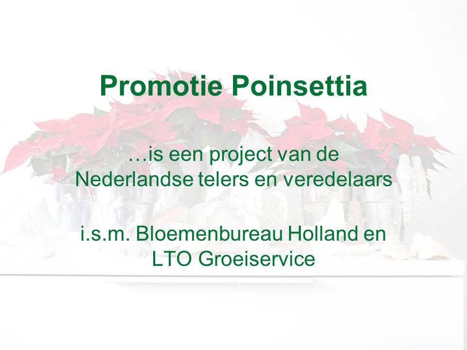 Promotie Poinsettia …is een project van de Nederlandse telers en veredelaars i.s.m.