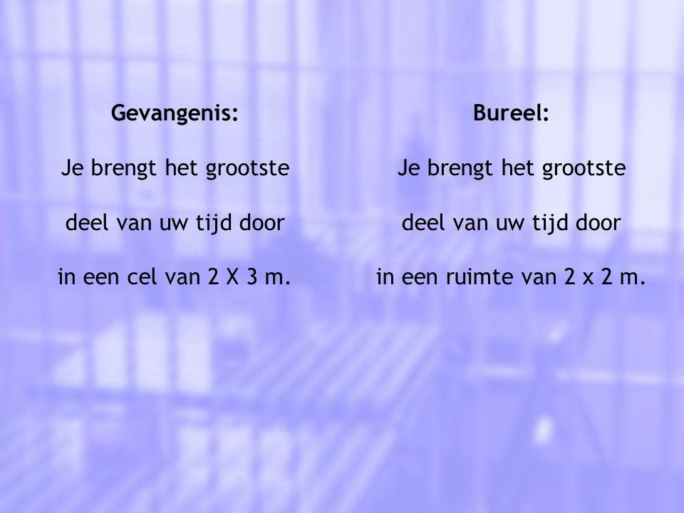 Gevangenis: Je brengt het grootste deel van uw tijd door in een cel van 2 X 3 m.