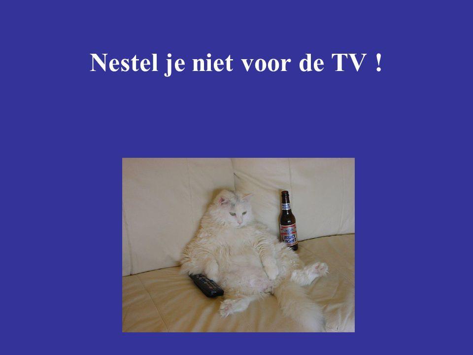 Nestel je niet voor de TV !