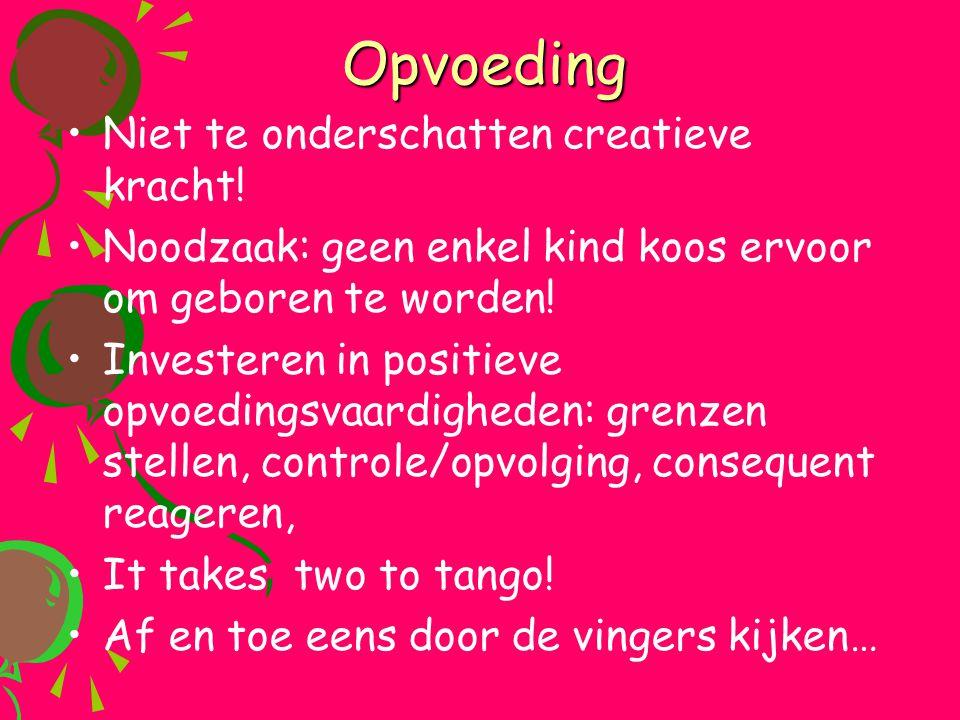 Opvoeding •Niet te onderschatten creatieve kracht! •Noodzaak: geen enkel kind koos ervoor om geboren te worden! •Investeren in positieve opvoedingsvaa