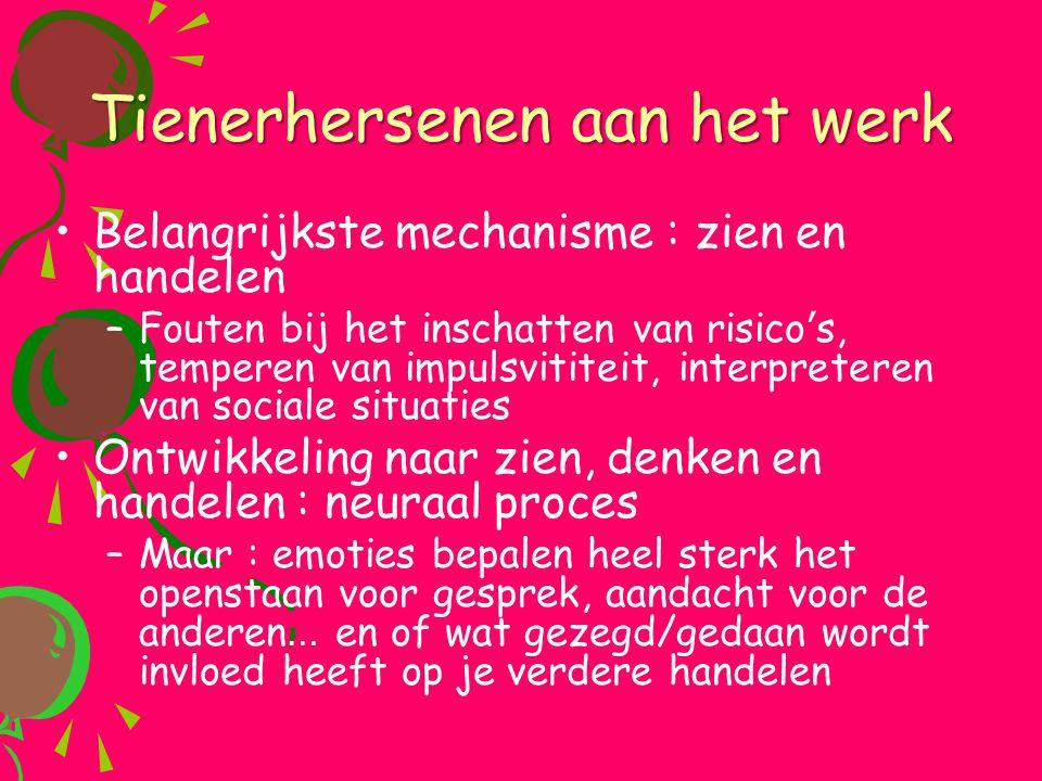 Tienerhersenen aan het werk •Belangrijkste mechanisme : zien en handelen –Fouten bij het inschatten van risico ' s, temperen van impulsvititeit, inter