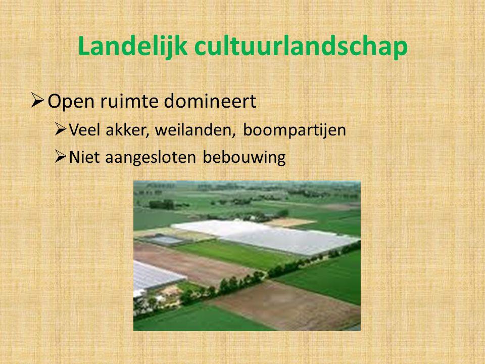 Landelijk cultuurlandschap  Open ruimte domineert  Veel akker, weilanden, boompartijen  Niet aangesloten bebouwing