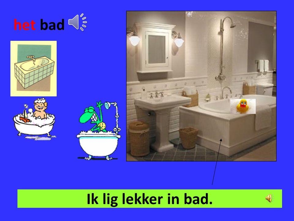 de badkamer In de badkamer ga ik mijn tanden poetsen.