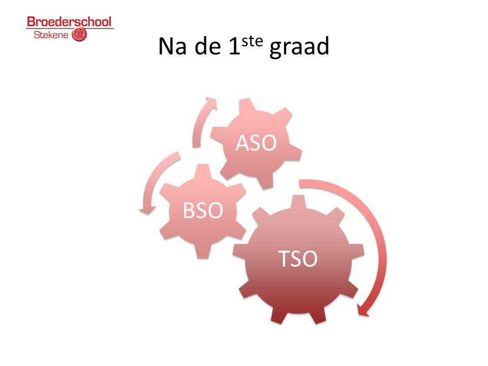 Na de 1 ste graad TSO BSO ASO