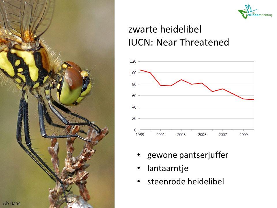 zwarte heidelibel IUCN: Near Threatened • gewone pantserjuffer • lantaarntje • steenrode heidelibel Ab Baas