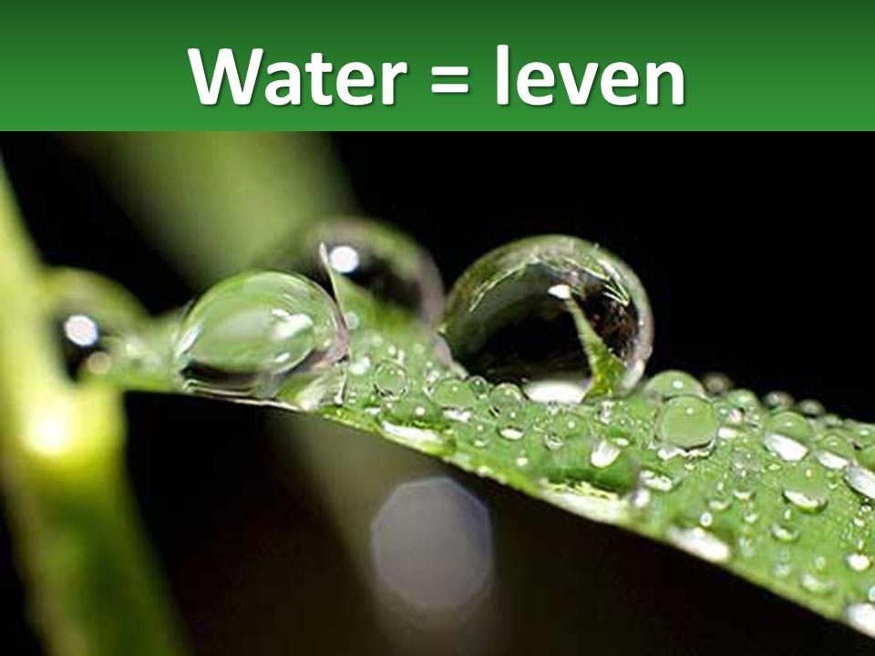 Water = voeding