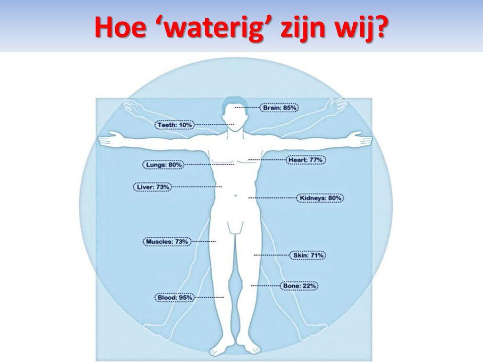 Verbaasd. U zag dat ons lichaam voor het grootste deel uit water bestaat.