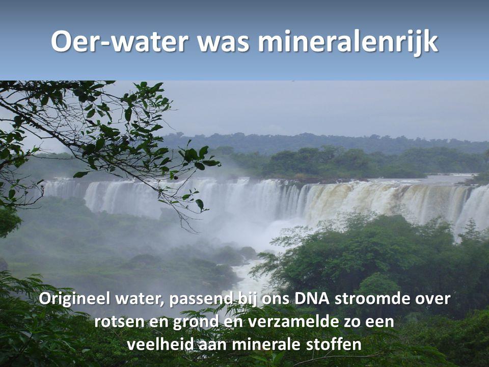 Oer-water was mineralenrijk Origineel water, passend bij ons DNA stroomde over rotsen en grond en verzamelde zo een veelheid aan minerale stoffen