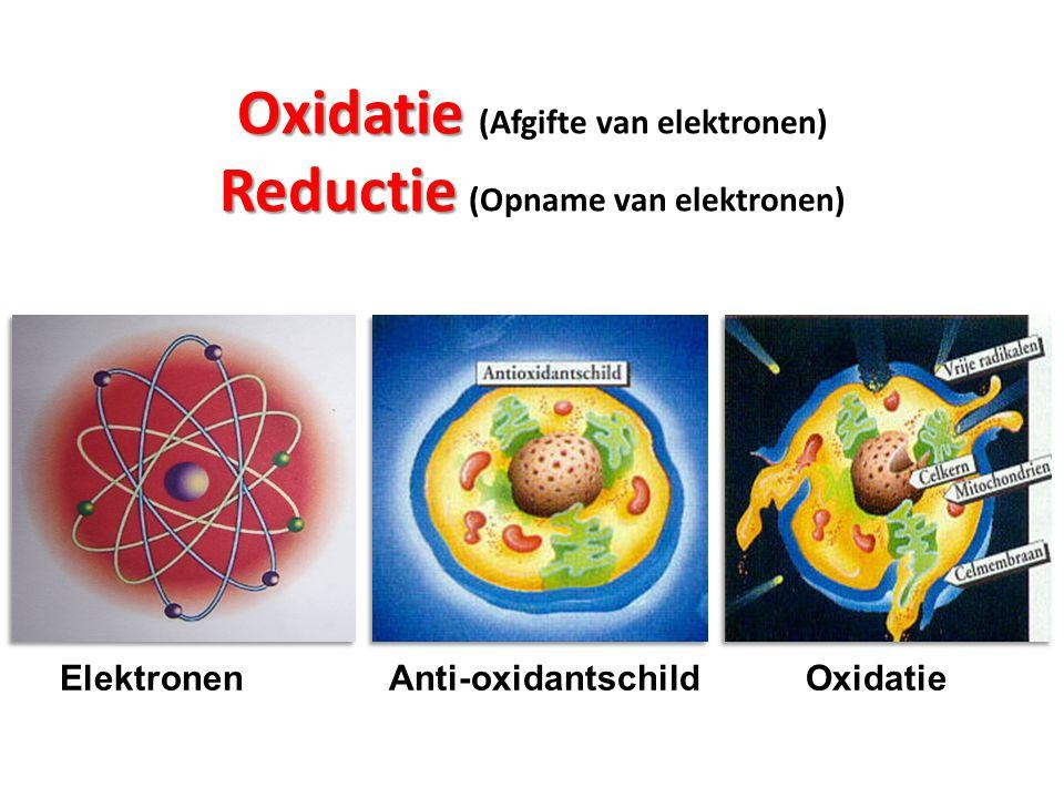 Reductie Reductie (Opname van elektronen) Biologische voeding, mineralen/vitamines reduceren vrije elektronen.