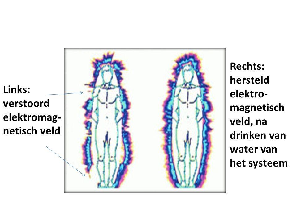 Links: verstoord elektromag- netisch veld Rechts: hersteld elektro- magnetisch veld, na drinken van water van het systeem