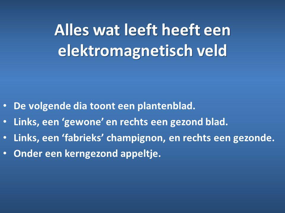 Alles wat leeft heeft een elektromagnetisch veld • De volgende dia toont een plantenblad. • Links, een 'gewone' en rechts een gezond blad. • Links, ee