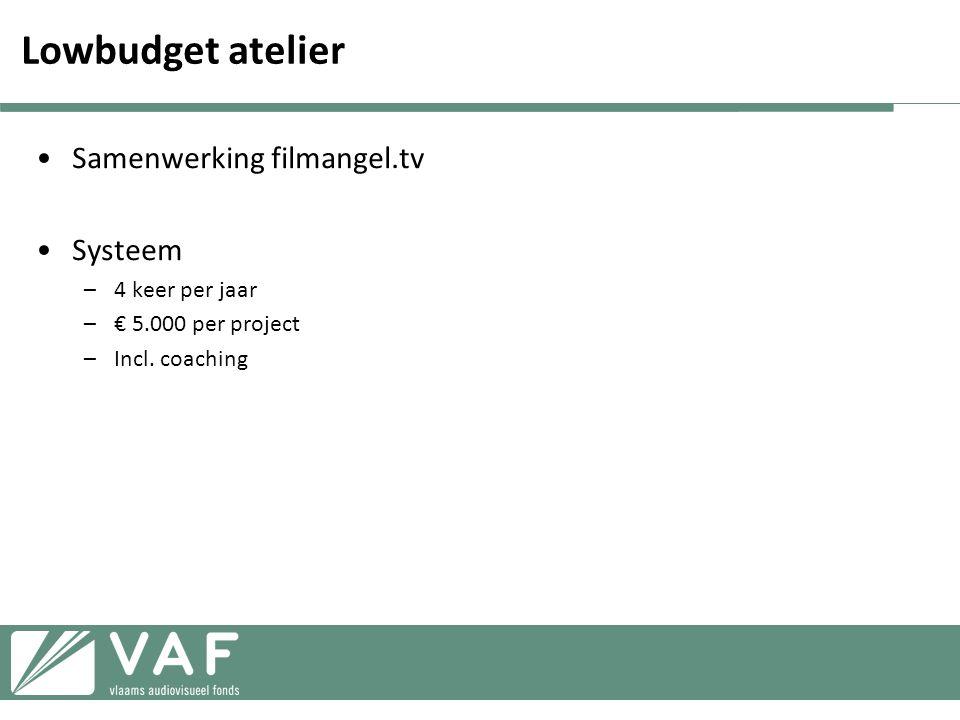 Lowbudget atelier •Samenwerking filmangel.tv •Systeem –4 keer per jaar –€ 5.000 per project –Incl.