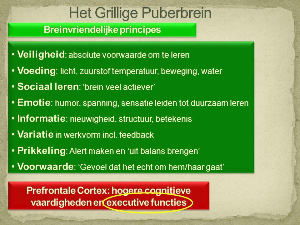 •Veiligheid : absolute voorwaarde om te leren •Voeding : licht, zuurstof temperatuur, beweging, water •Sociaal leren : 'brein veel actiever' •Emotie :