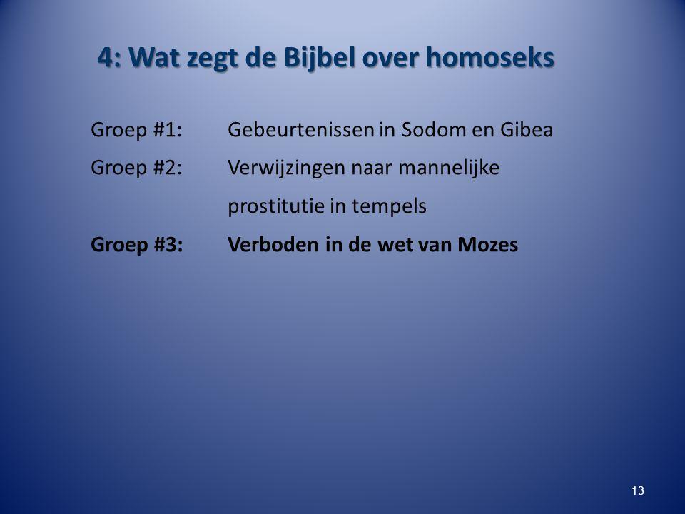 4: Wat zegt de Bijbel over homoseks Groep #1: Gebeurtenissen in Sodom en Gibea Groep #2: Verwijzingen naar mannelijke prostitutie in tempels Groep #3:
