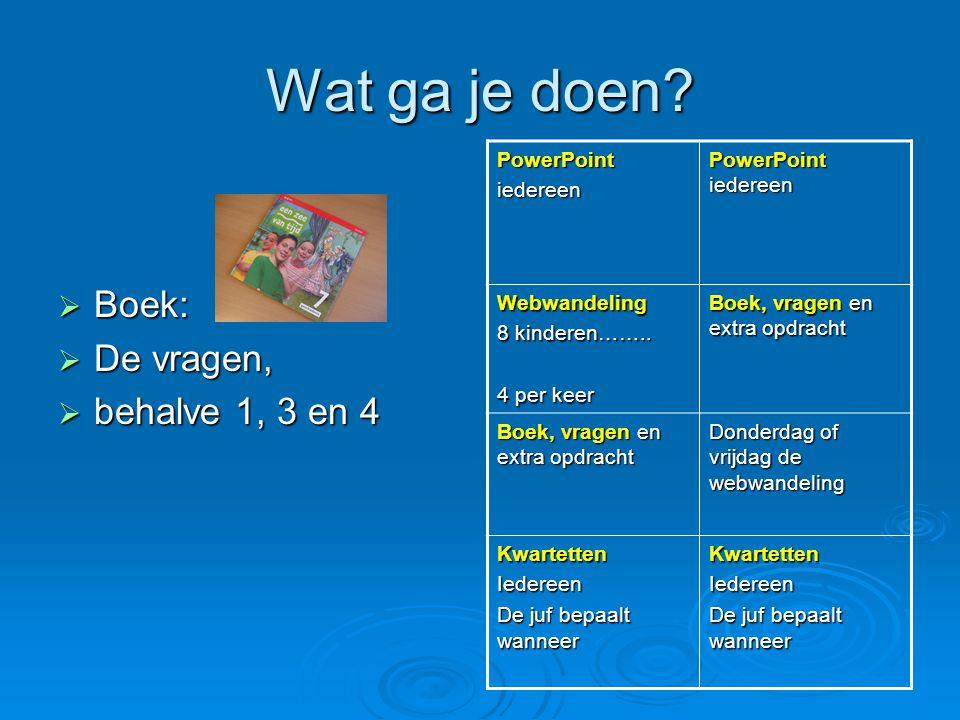 Wat ga je doen?  Boek:  De vragen,  behalve 1, 3 en 4 PowerPointiedereen PowerPoint iedereen Webwandeling 8 kinderen…….. 4 per keer Boek, vragen en