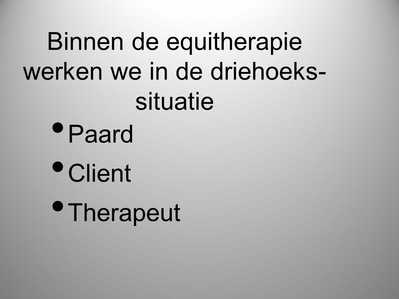Binnen de equitherapie werken we in de driehoeks- situatie • Paard • Client • Therapeut