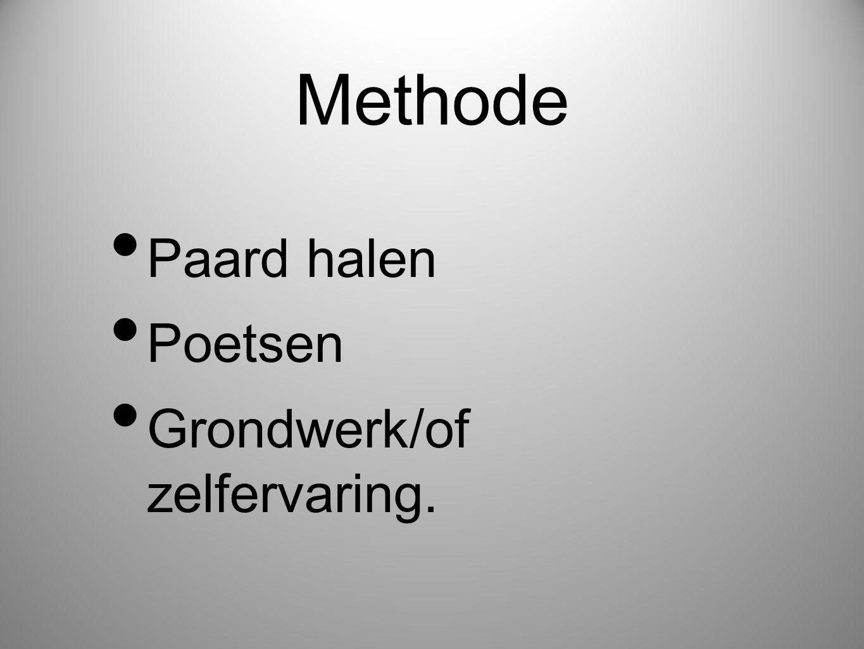Methode • Paard halen • Poetsen • Grondwerk/of zelfervaring.