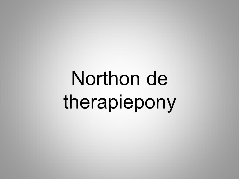 De basis van Equitherapie.