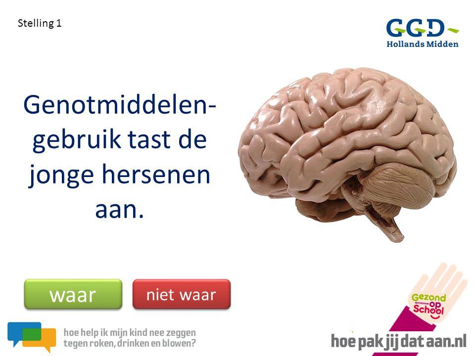 Genotmiddelen- gebruik tast de jonge hersenen aan. Stelling 1 waar niet waar