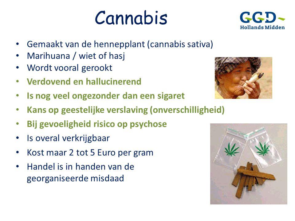 Cannabis • Gemaakt van de hennepplant (cannabis sativa) • Marihuana / wiet of hasj • Wordt vooral gerookt • Verdovend en hallucinerend • Is nog veel o