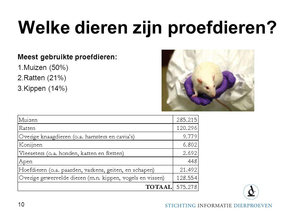 Welke dieren zijn proefdieren? Meest gebruikte proefdieren: 1.Muizen (50%) 2.Ratten (21%) 3.Kippen (14%) 10