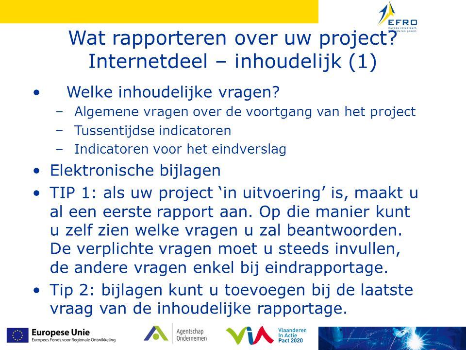 Wat rapporteren over uw project. Internetdeel – inhoudelijk (1) • Welke inhoudelijke vragen.