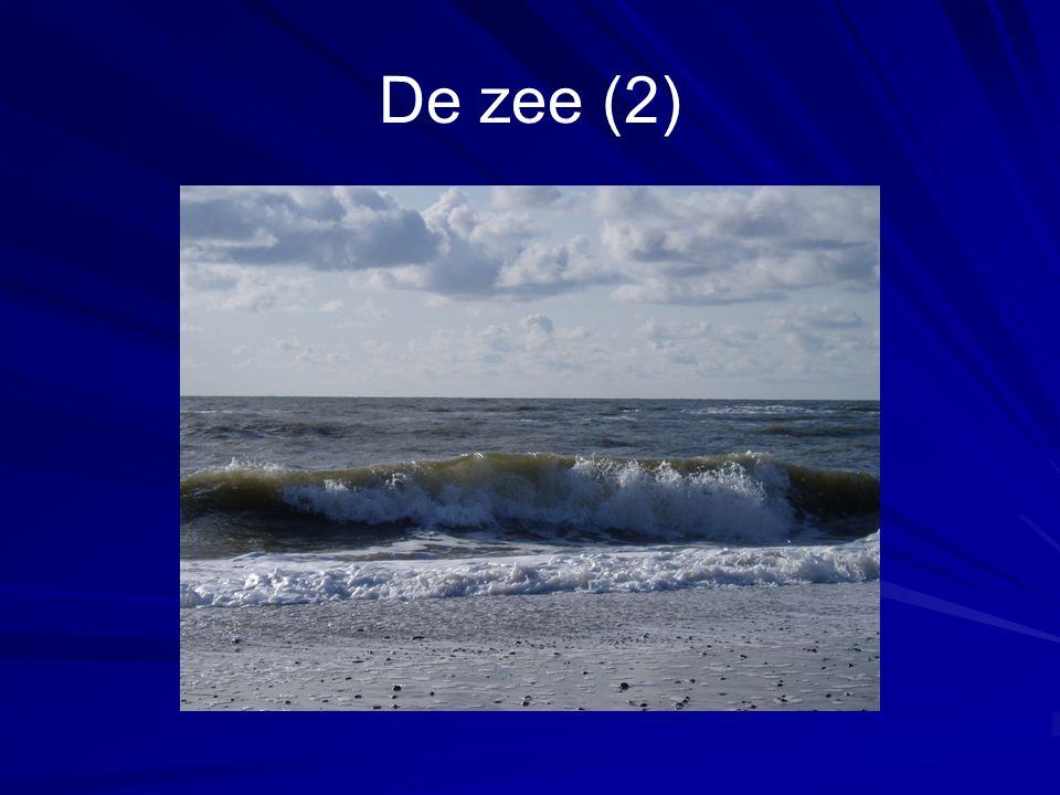 De zee (2)