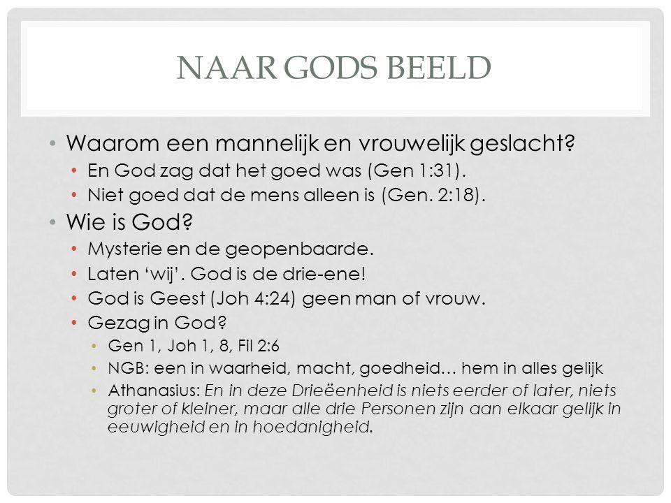 NAAR GODS BEELD • Waarom een mannelijk en vrouwelijk geslacht? • En God zag dat het goed was (Gen 1:31). • Niet goed dat de mens alleen is (Gen. 2:18)