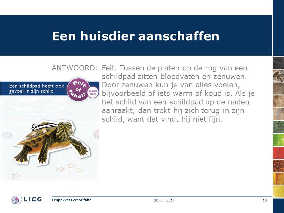 Een huisdier aanschaffen ANTWOORD:Feit.