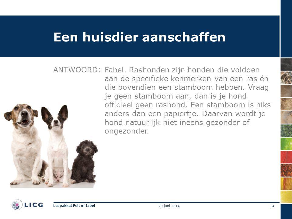 Een huisdier aanschaffen ANTWOORD:Fabel. Rashonden zijn honden die voldoen aan de specifieke kenmerken van een ras én die bovendien een stamboom hebbe