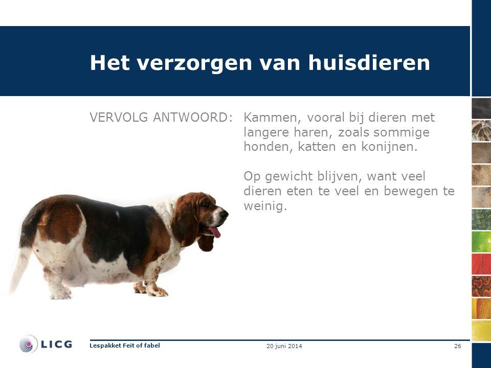 Het verzorgen van huisdieren VERVOLG ANTWOORD:Kammen, vooral bij dieren met langere haren, zoals sommige honden, katten en konijnen. Op gewicht blijve