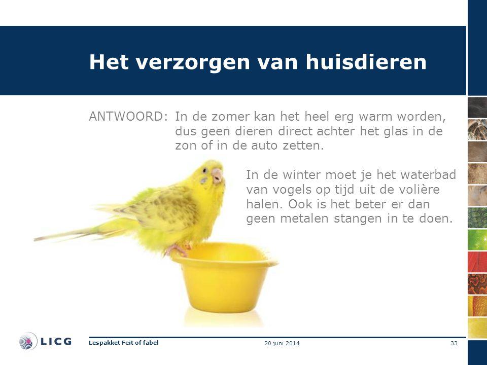 Het verzorgen van huisdieren ANTWOORD:In de zomer kan het heel erg warm worden, dus geen dieren direct achter het glas in de zon of in de auto zetten.