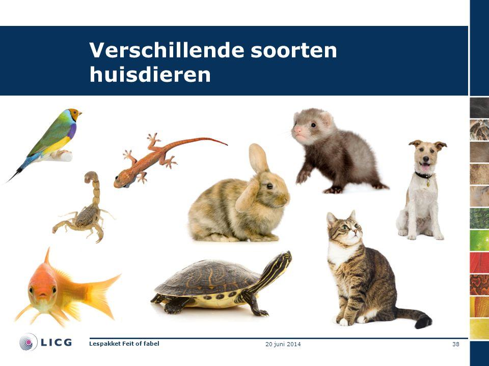Verschillende soorten huisdieren 38 Lespakket Feit of fabel 20 juni 2014