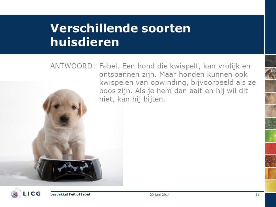 Verschillende soorten huisdieren ANTWOORD:Fabel. Een hond die kwispelt, kan vrolijk en ontspannen zijn. Maar honden kunnen ook kwispelen van opwinding