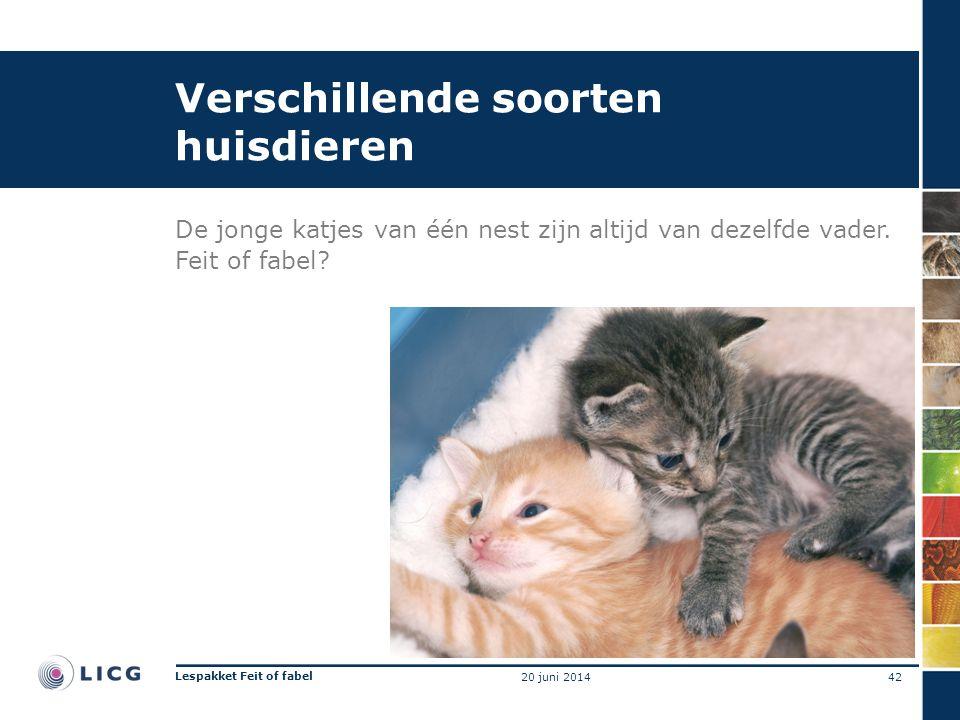 Verschillende soorten huisdieren De jonge katjes van één nest zijn altijd van dezelfde vader. Feit of fabel? 42 Lespakket Feit of fabel 20 juni 2014
